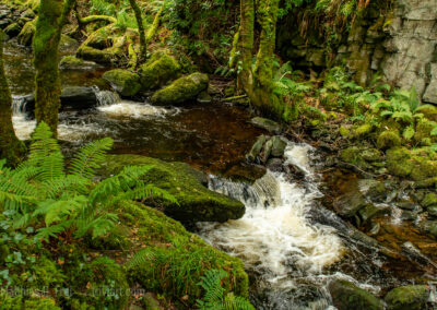 Torc Waterfall Unterlauf