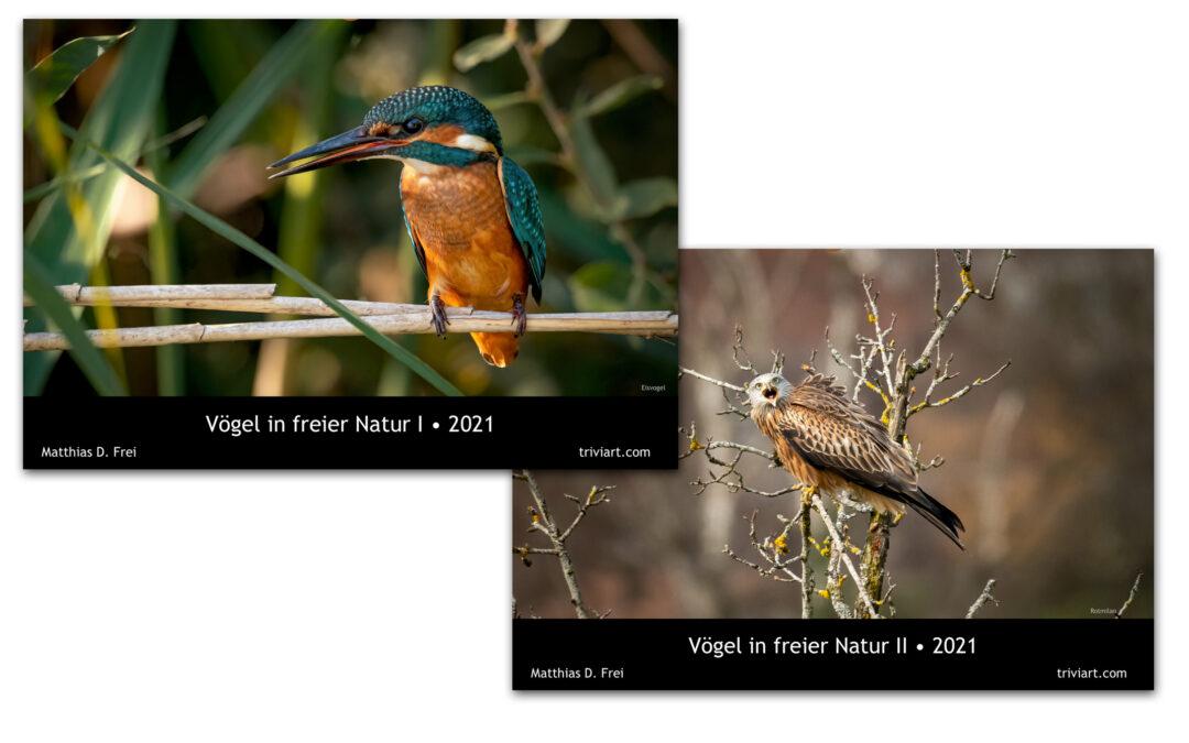 Fotokalender 2021 – Vögel in freier Natur